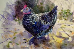 The Sunday Art Show - how to paint a hen