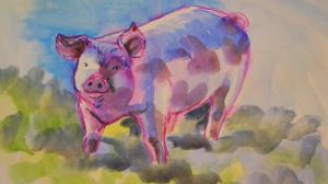 The Sunday Art Show - How to paint a pig in watercolour