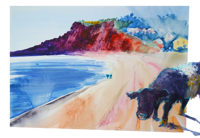 Belted galloway cows on the beach surreal watercolour painting